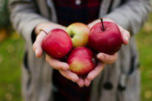 Zo houd je appels langer vers